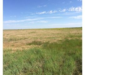 0 Weld County Road 110 TBD Carr, CO 80612 - Image