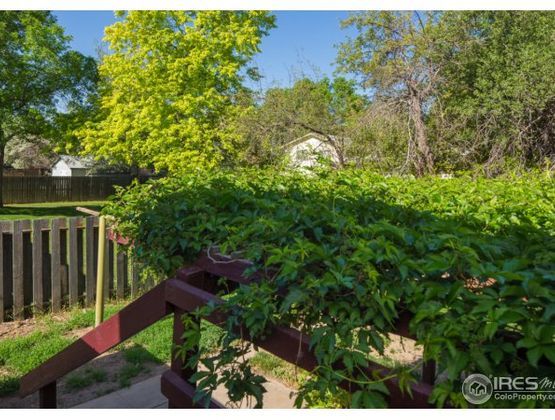 1049 Cypress Drive Fort Collins, CO 80521 - Photo 15