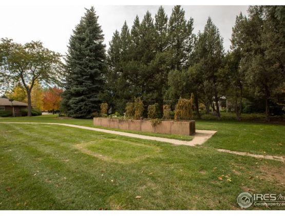 4725 Player Drive Fort Collins, CO 80525 - Photo 38