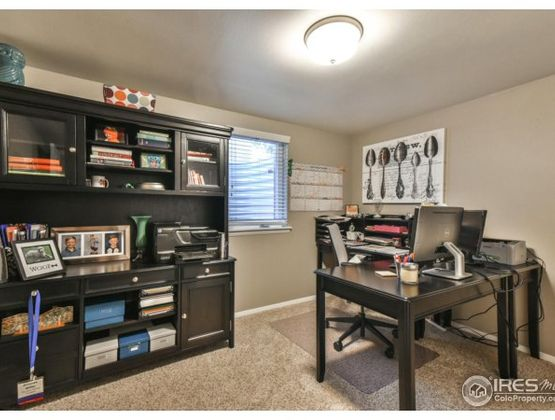 609 Princeton Road Fort Collins, CO 80525 - Photo 26
