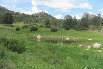 110 Clear Spring Trail Red Feather Lakes, CO 80545 - Image 1