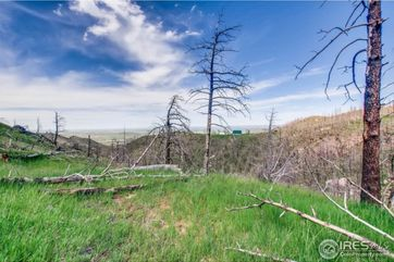 1500 Whale Rock Road Bellvue, CO 80512 - Image 1