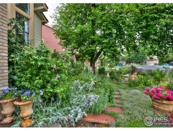 2933 Brumbaugh Drive Fort Collins, CO 80526 - Photo 35