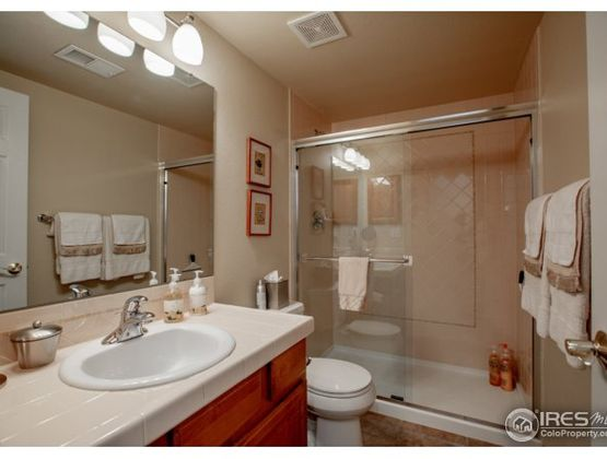 5271 Coral Court Windsor, CO 80528 - Photo 33