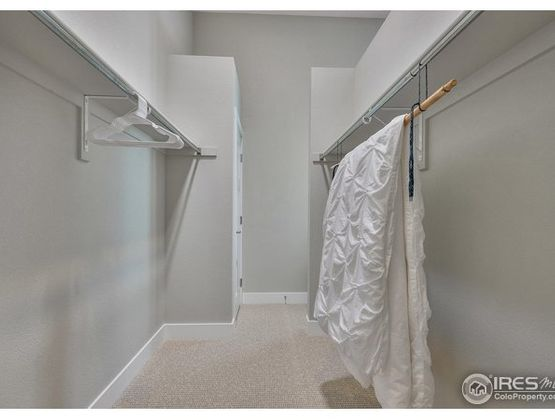 399 Osiander Street Fort Collins, CO 80524 - Photo 25