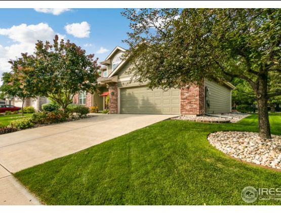 5613 White Willow Drive Fort Collins, CO 80528 - Photo 4