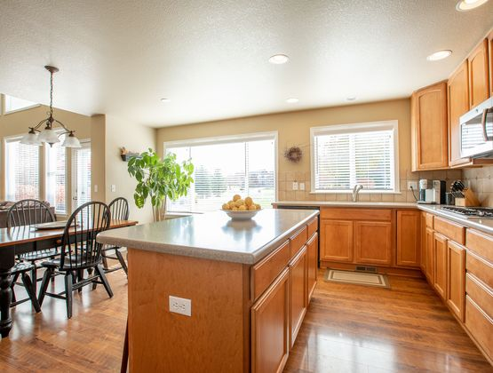 5393 Trade Wind Court Windsor, CO 80528 - Photo 12