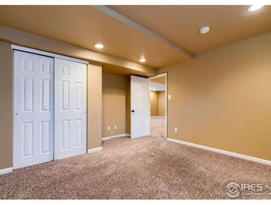 879 Emerald Drive Windsor, CO 80550 - Photo 31