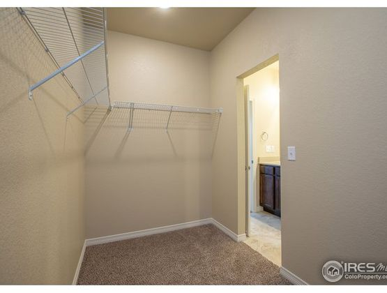 3039 County Fair Lane #2 Fort Collins, CO 80528 - Photo 24