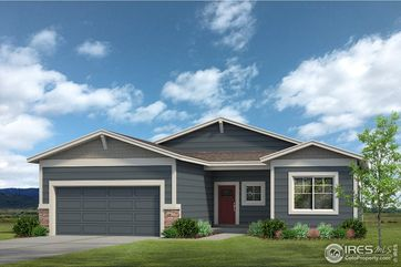 3925 Buckthorn Street Wellington, CO 80549 - Image 1