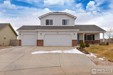 3111 Thundering Herd Way Wellington, CO 80549 - Image 1
