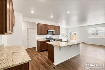1801 Hydrangea Drive Windsor, CO 80550 - Image 1