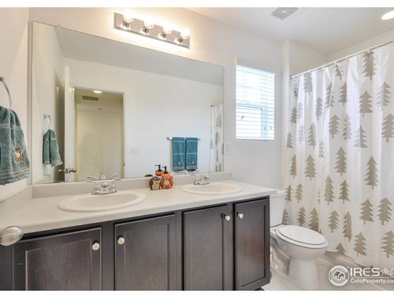 1661 Stoll Drive Windsor, CO 80550 - Photo 22