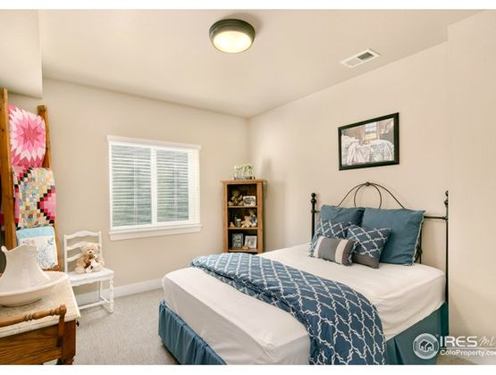 6949 Byers Court Timnath, CO 80547 - Photo 22