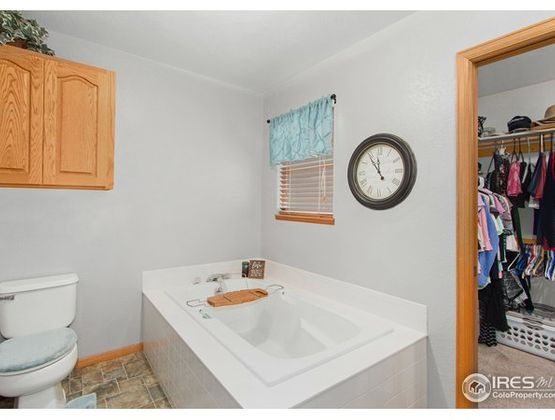 4417 Birchwood Drive Loveland, CO 80538 - Photo 15