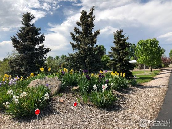 7285 County Road 72 Windsor, CO 80550
