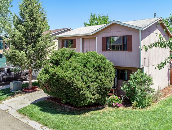 800 Countryside Drive Fort Collins, CO 80524 - Photo 2