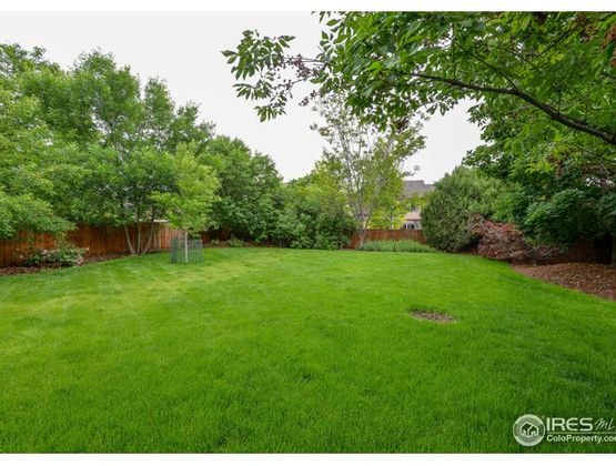 6250 Clymer Circle Fort Collins, CO 80528 - Photo 33