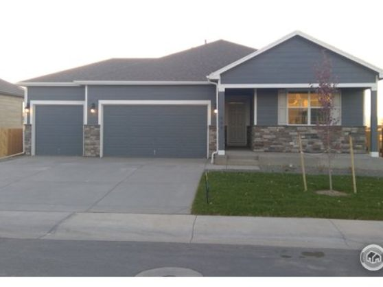 944 Camberly Drive Windsor, CO 80550