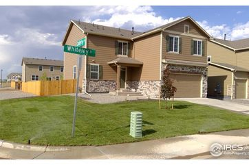 1690 Whiteley Drive Windsor, CO 80550 - Image 1