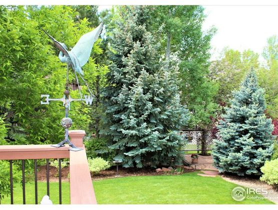 1007 Milan Terrace Drive Fort Collins, CO 80525 - Photo 33