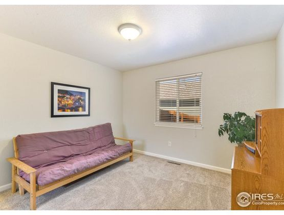 1002 Elgin Court Fort Collins, CO 80524 - Photo 15