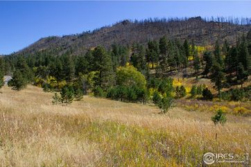 0 Rist Canyon Road Bellvue, CO 80512 - Image 1