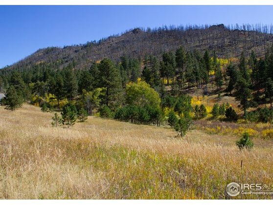 0 Rist Canyon Road Bellvue, CO 80512
