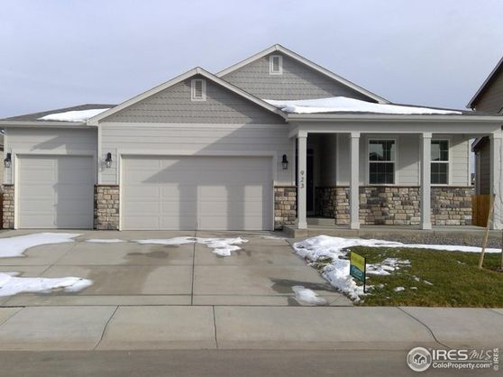 923 Camberly Drive Windsor, CO 80550