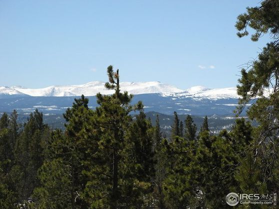 1037 Jicarilla Trail Red Feather Lakes, CO 80545