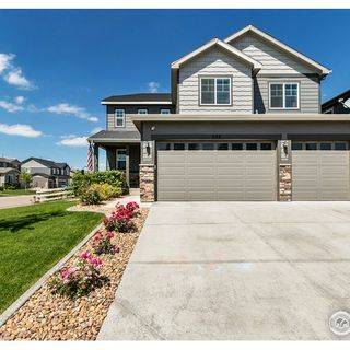 288 McNeil Drive Windsor, CO 80550