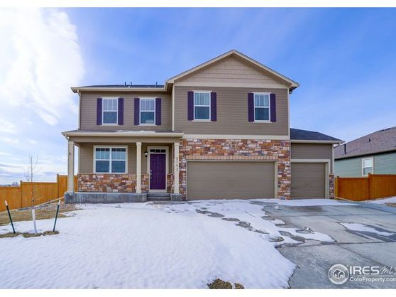3793 Torch Lily Street Wellington, CO 80549