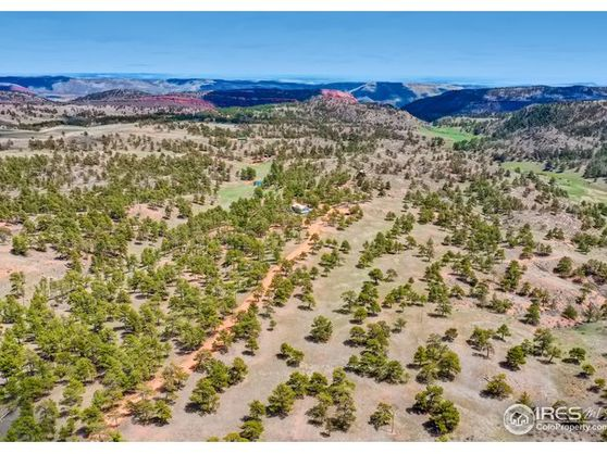 524 Wanstead Road Livermore, CO 80536