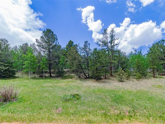 185 Willow Road Divide, CO 80814
